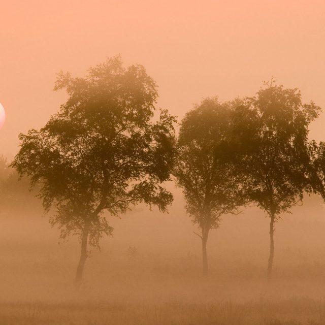natuurfotografie-landschap -nature-ernstdirksenfotografie